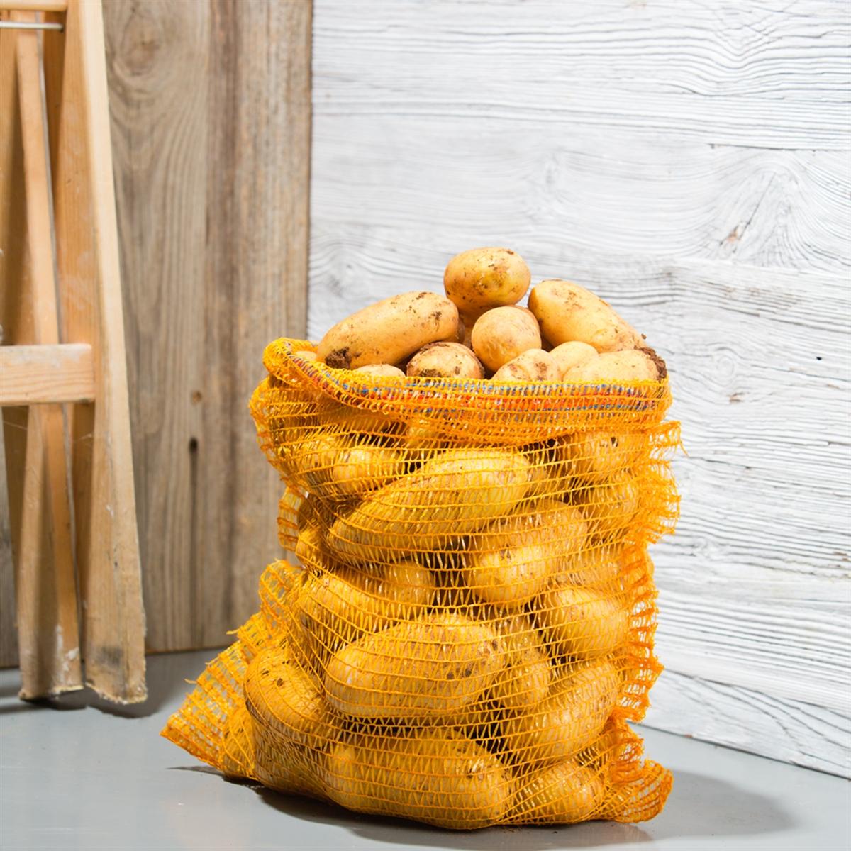 pommes de terre de consommation filet de 10 kg origine france. Black Bedroom Furniture Sets. Home Design Ideas