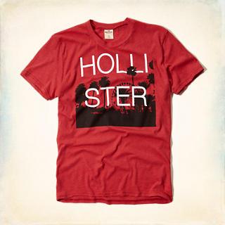 Séléction de T-Shirt Hollister pour Homme