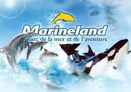 Billet parcs Marineland + Kid's Island + Minigolf - Antibes