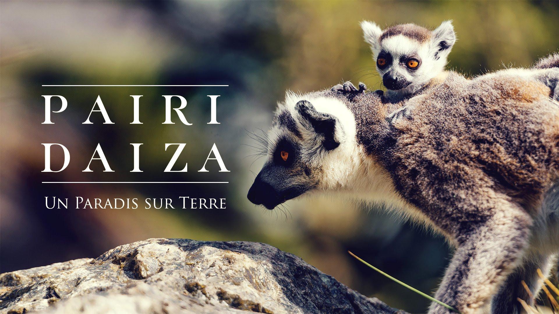Entrée ZOO Pairi Daiza + Hotel et petit-déjeuner buffet