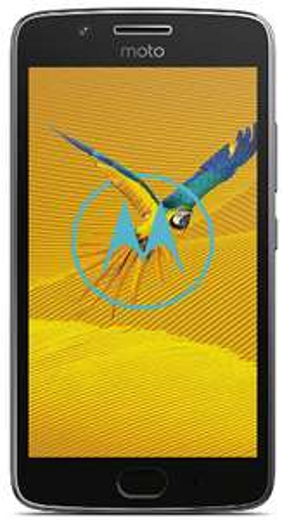 "Smartphone 5"" Motorola Moto G5 - Full HD, RAM 3Go, 16 Go, Android 7.0"