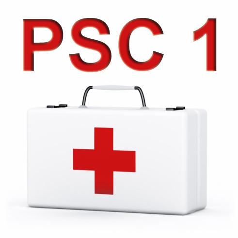 Formation de secours PSC1 pour les adolescents de 11 à 17 ans Gratuite - Sannois (95)