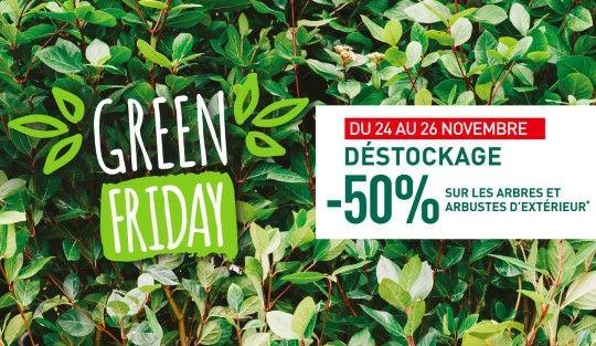 50% de réduction sur les arbres et arbustes d'extérieur (sauf sapins).