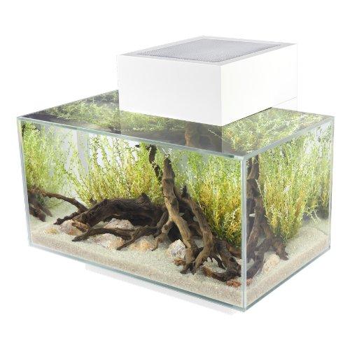 Aquarium Fluval Edge - 23L, Blanc
