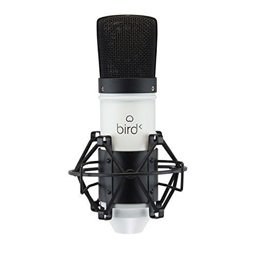 Microphone de studio à condensateur Bird EM2