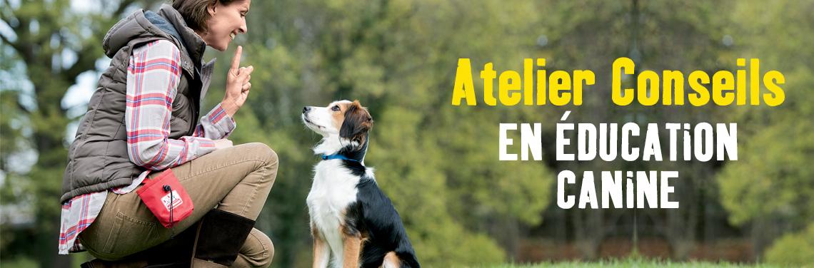 Atelier gratuit de conseil en éducation canine dans plusieurs régions