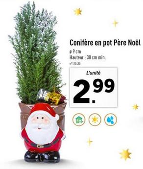Promotion sur une sélection de plantes - Ex: Conifère en pot Père Noël - 30cm