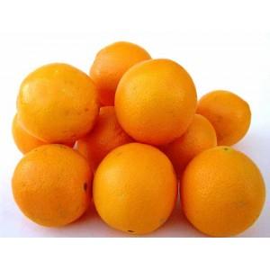 1 Kilo d'Orange bio (à jus) - La Vie Claire d'Alès (30)