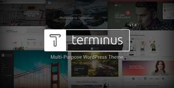 Template pour Wordpress Terminus gratuit sur PC (dématérialisé)