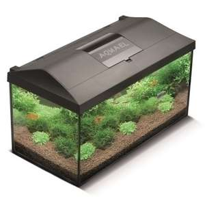 Aquarium Leddy 60 (54 L) - Vernouillet (78)