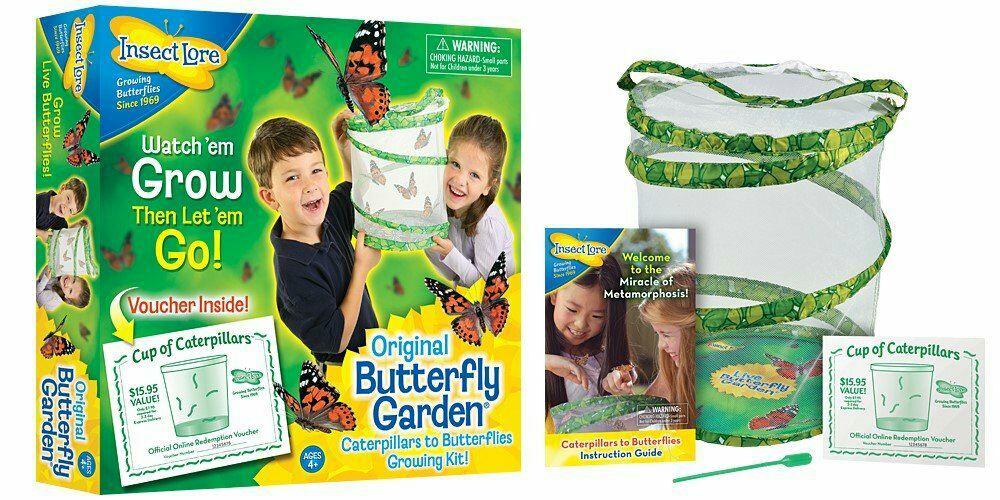 Kit d'élevage de papillons - 8010FR