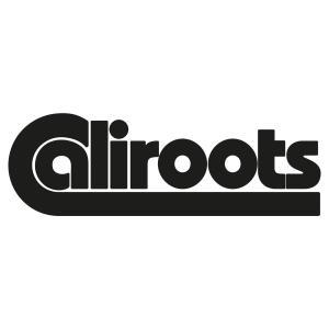 Promo de -30% à -50% + 10% de réduction supplémentaire chez Caliroots