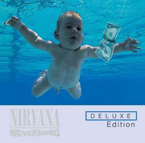 Coffret  Combo CD + DVD Super Deluxe Nevermind - 20ème Anniversaire (4 CD + DVD)