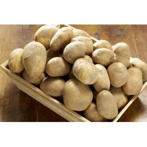 Filet de 25kg de pommes de terre de consommation non lavées