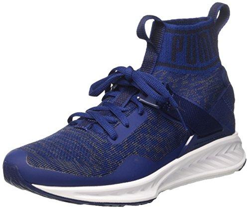 Baskets Puma Ignite Evoknit - Bleu à partir de 38.47€