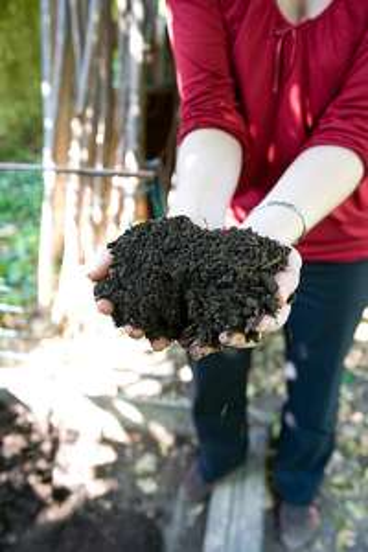 Distribution gratuite de compost - Bois d'Arcy (78)