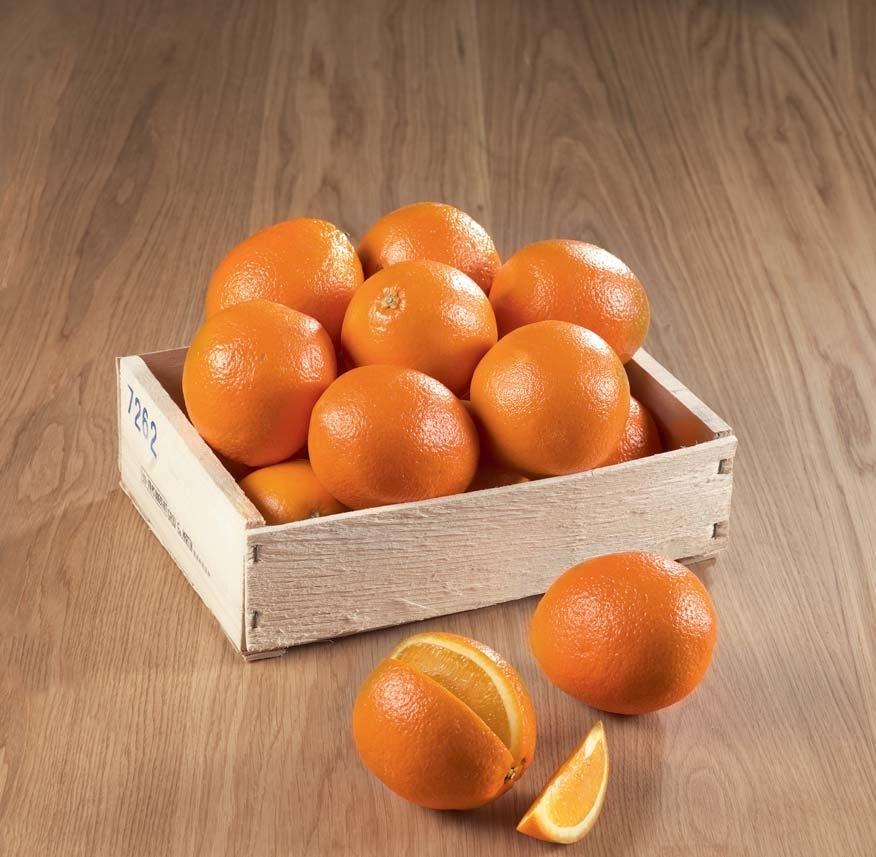 Le filet de 3 kg d'Oranges variété Naveline - Charente (16) Charente Maritime (17) Creuse (23) Vendée (85) Vienne (86) Haute Vienne (87)
