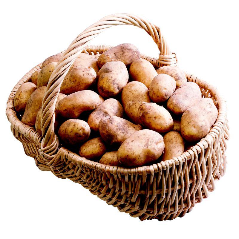 Pommes de terre - Filet 10kg - Montpellier (34)