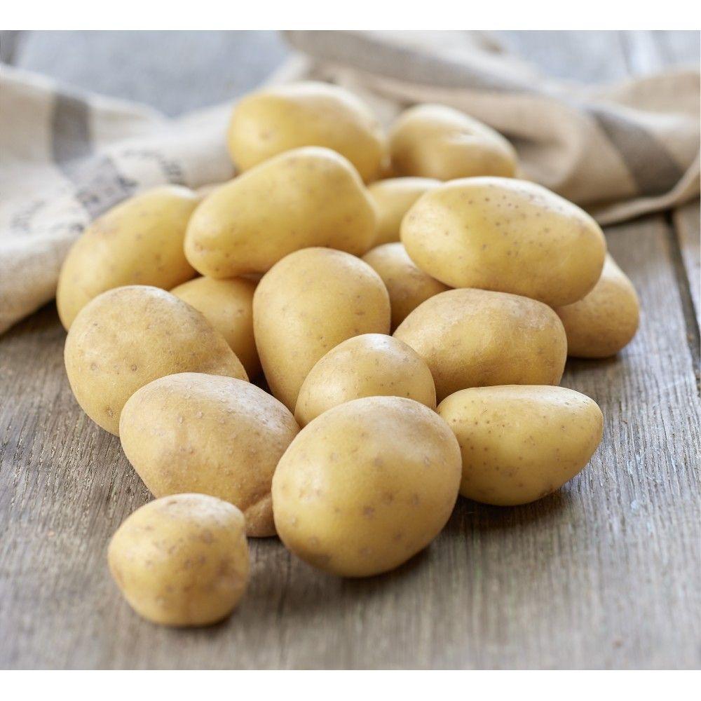 Lot de 2 filets de 10 kg de pommes de terre - différentes variétés, cat. 1, calibre 40/70 mm (Origine France)
