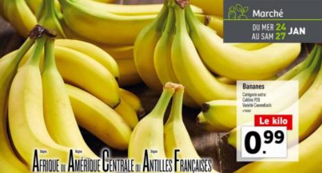 Bananes Calibre P20 Variété Cavendish - Le kg