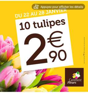 Bouquet de 10 tulipes (carrementfleurs)
