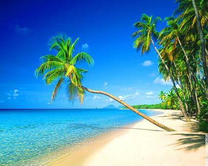 Voyage en Martinique Paris - Fort De France aller-retour en  Juin 2015