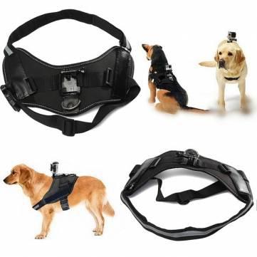 harnais caméra sportive (Gopro, SjCam...) pour chien