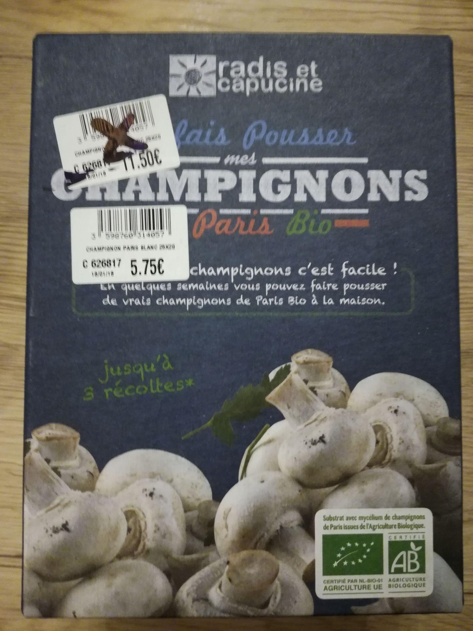 Kit à champignons: Paris ou pleurotes - Saint-Jouan-des Guerets (35)