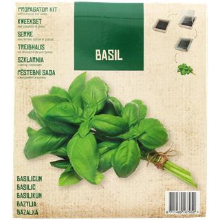 Mini kit de culture Basilic, Poivron ou Roquette
