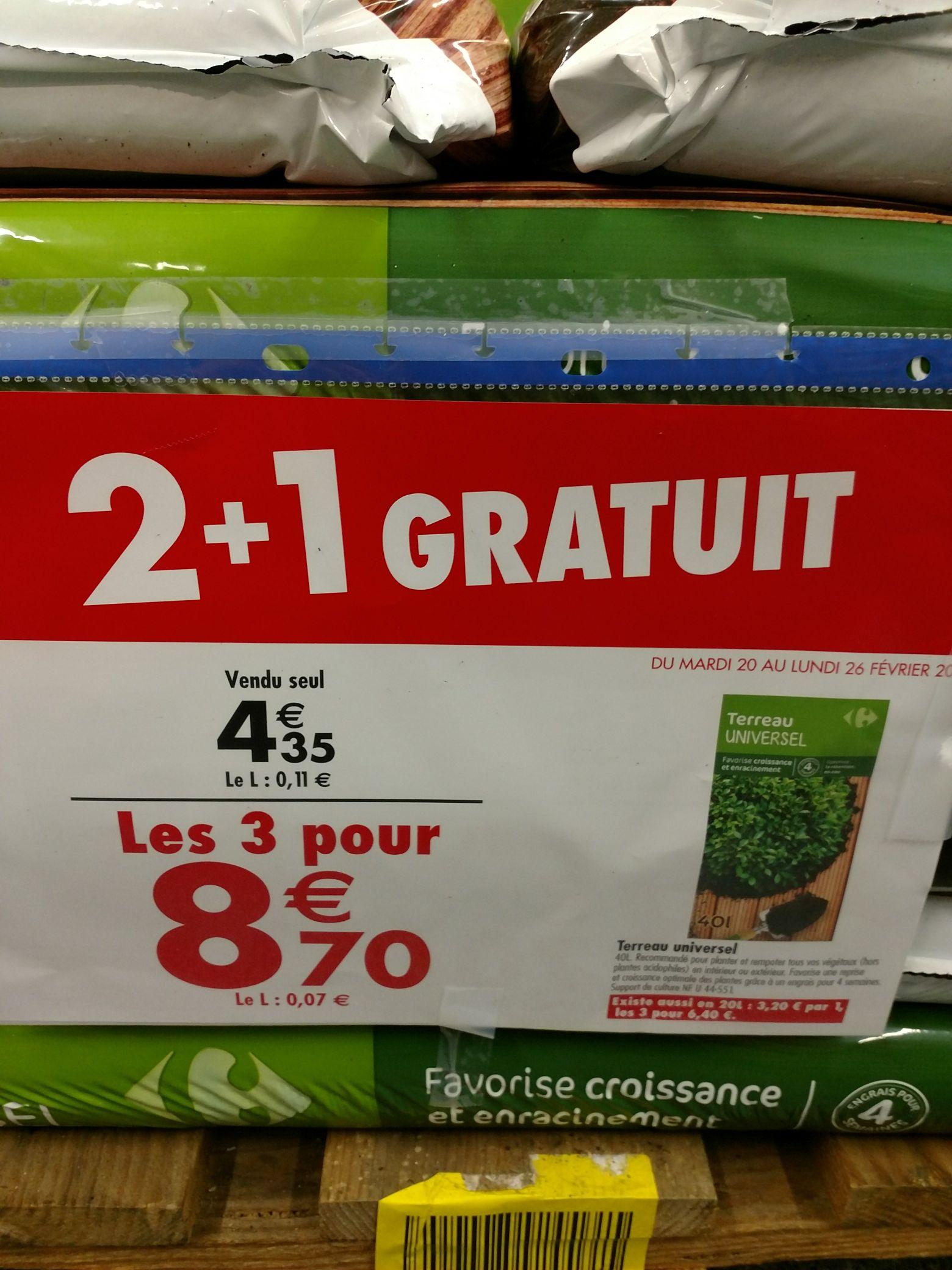 3 Sacs de Terreau universel 40L - Carrefour Créteil soleil (94)