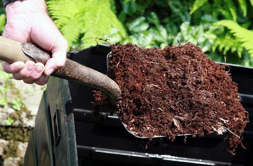 Distribution gratuite de compost le dimanche 25 mars de 14h à 17h30 à Bois d'Arcy (78)