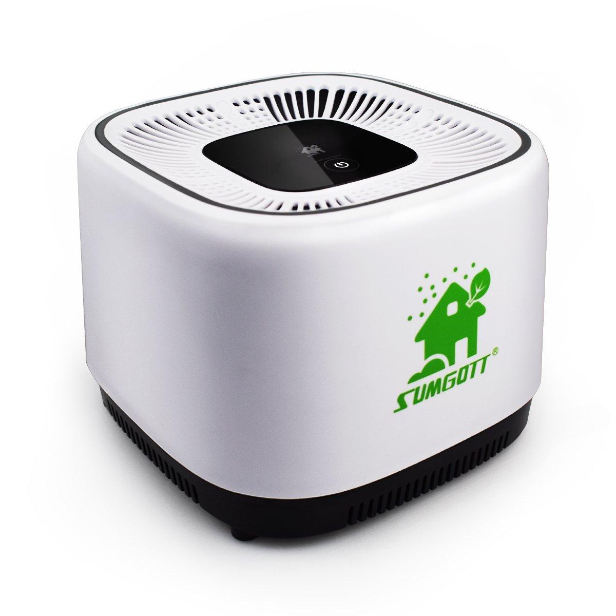 Purificateur d'air Sumgott avec filtre à charbon (vendeur tiers)