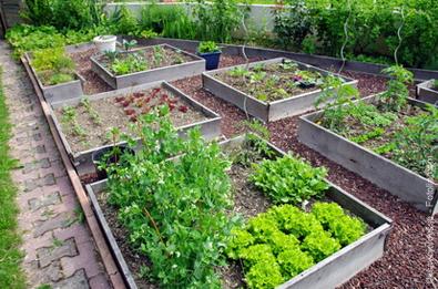 Atelier Gratuit conseils pour apprendre à travailler le sol et cultiver des engrais - Paris (75)