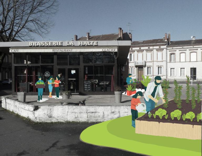 Bourse d'échange de plants et graines + divers animations autours de la culture des légumes - Albi (81)
