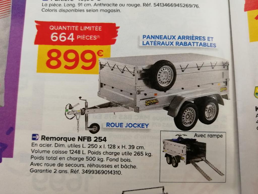 Remorque 2 essieux + réhausse ridelles + roue jockey + roue de secours + rampe + bâche