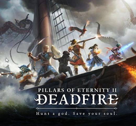 Jeu Pillars of Eternity II: Deadfire sur PC (Dématérialisé, Steam, Frais inclus)