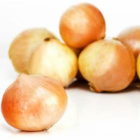 Oignons Jaunes - Filet de 5 kg (Saint-Serge 49)