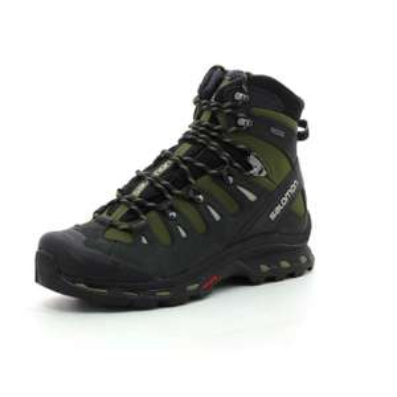 Chaussures de randonnée Salomon Quest 4D 2 GTX Goretex