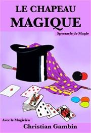 Jusqu'à 67% de réductions sur Billets pour le Spectacle de magie pour enfant Le Chapeau Magique - Placement libre assis (Paris 75)