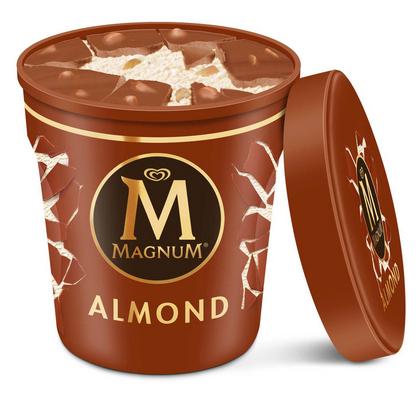 Pot de Glace Magnum (Variétés au choix) - 297g (Via Carte de Fidélité + BDR)