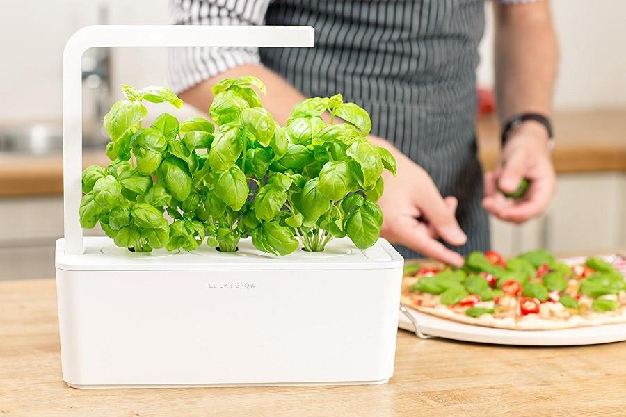 Jardinière d'intérieur avec kit prêt à pousser Click & Grow - 30x10x28 cm, blanc