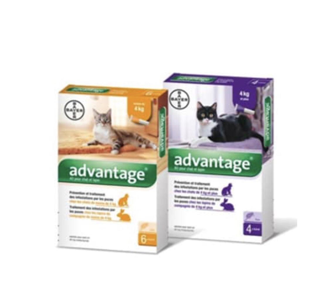 [Nouveaux clients] Lot de 2 paquets de  6 pipettes antipuces pour chat et lapin Advantage