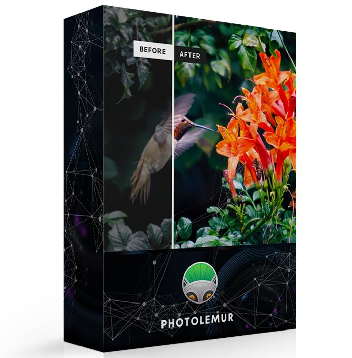 Logiciel Photolemur  Express 2.3 gratuit sur PC et MacOS