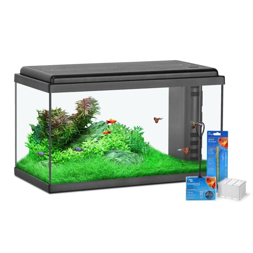 Aquarium 60 LED Aquatlantis Bio - 60L avec accessoires