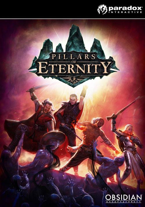Pillars of Eternity Hero Edition sur PC