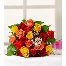 Bouquet de 19 roses et Gypsophile (Via 6,93€ sur la Carte fidélité)