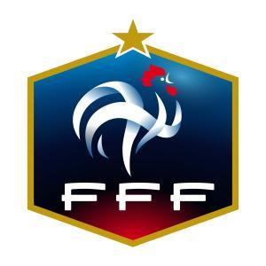 Place pour le match de Football Féminin France / Cameroun au Stade des Alpes à Grenoble à partir de 3.5€