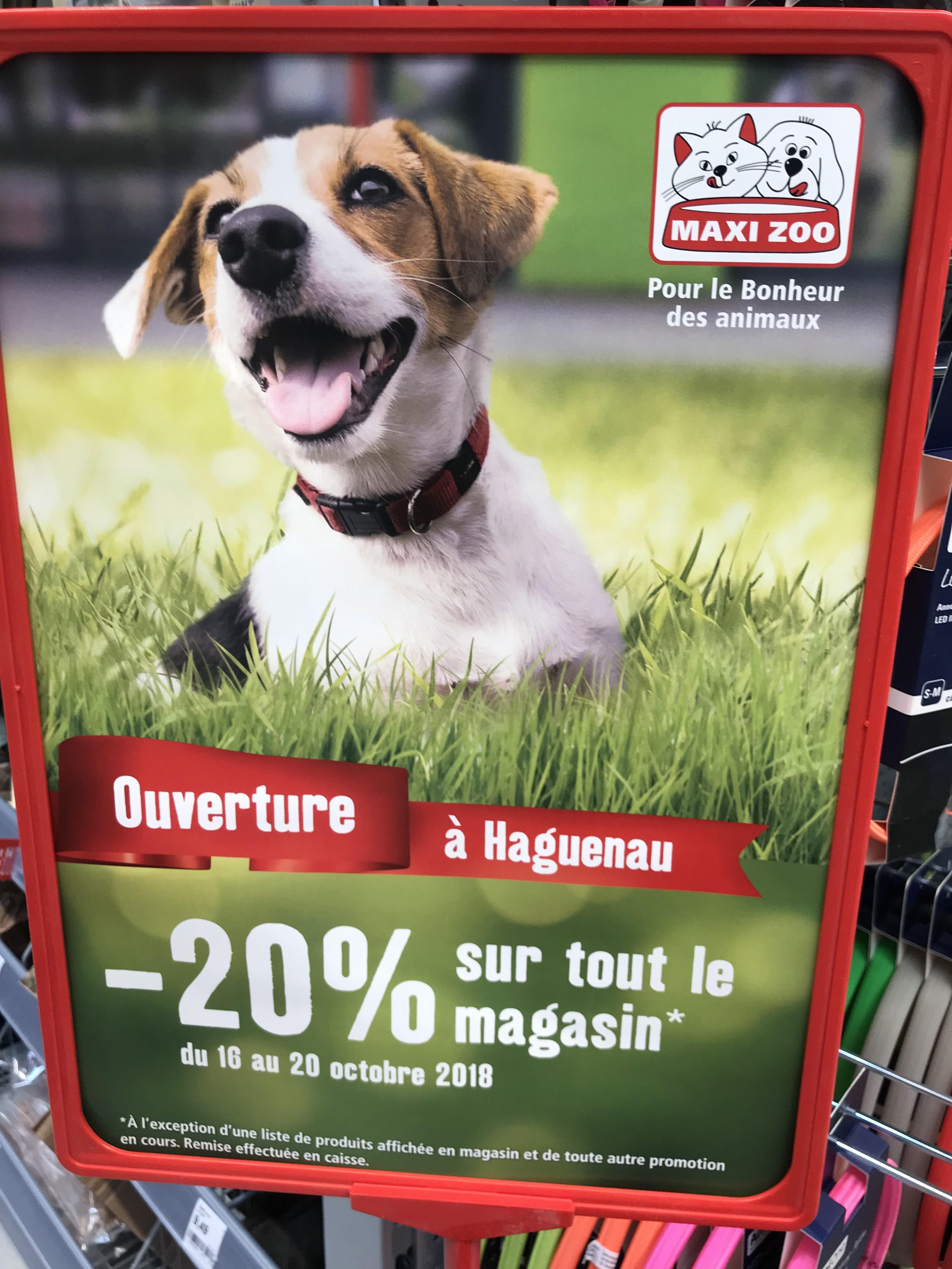 20% de réduction sur l'ensemble du magasin (hors exceptions) - Haguenau (67)