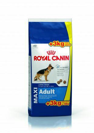 Croquette Royal Canin maxi adulte 15+3kg