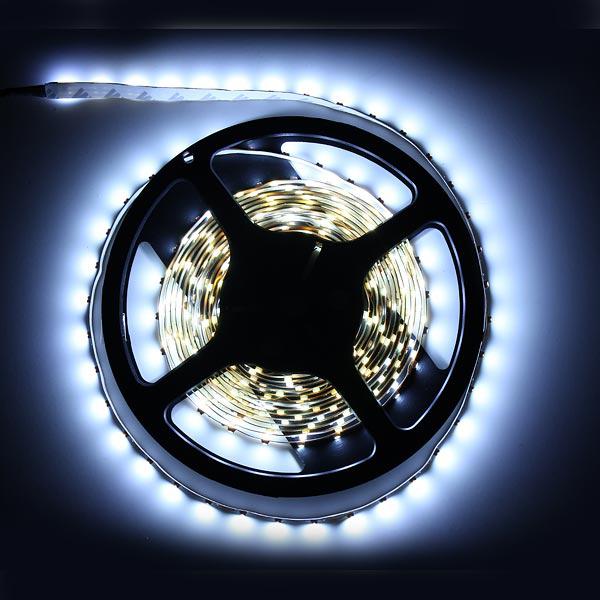 Bande 300 LED 5m 3528 SMD 12V - Blanc